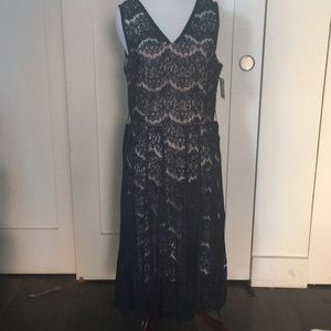 NANETTE LEPORE LACE BLUE FANTASTIC DRESS. NEW WTAG